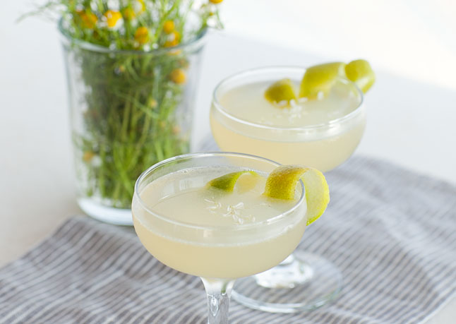 Gin for all seasons bartending news flash for Mixed drinks using gin